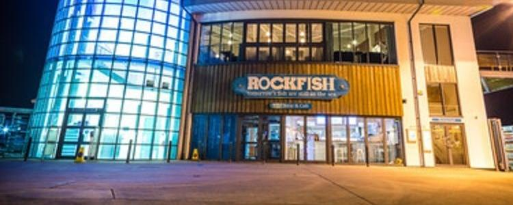 Rockfish Restaurants Brand Cover