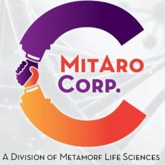 Metamorf Lifesciences- Best Pharma Franchise Company In Chandigarh