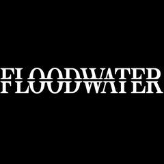 Floodwater logo