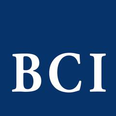 Blackstone Consulting Inc logo