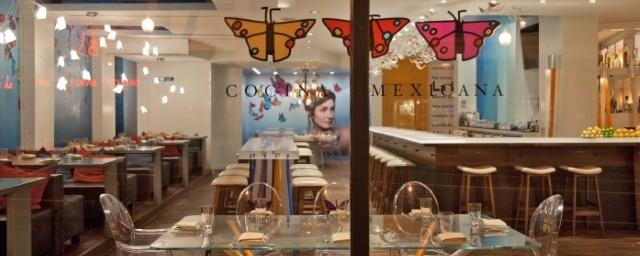 Oyamel Cocina Mexicana Brand Cover
