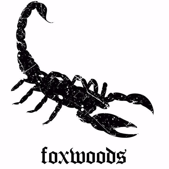 Night Club VIP Host at Scorpion Bar Foxwoods | Harri Jobs